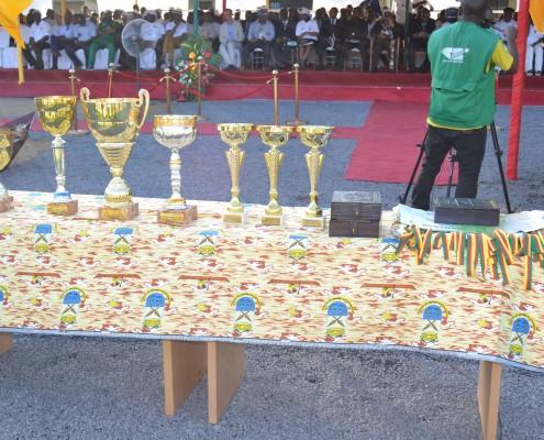 Cecifoot 2015 trophies
